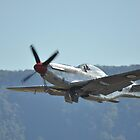 Albion Park Airshow 2017-Mustang A68-118 taking off by muz2142