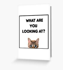 What are you loking at?T-Shirt Greeting Card