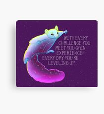 """Every Day You're Leveling Up"" Flying Space Squirrel Canvas Print"