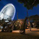 Big Spinner - Southbank Brisbane by Daniel Carr