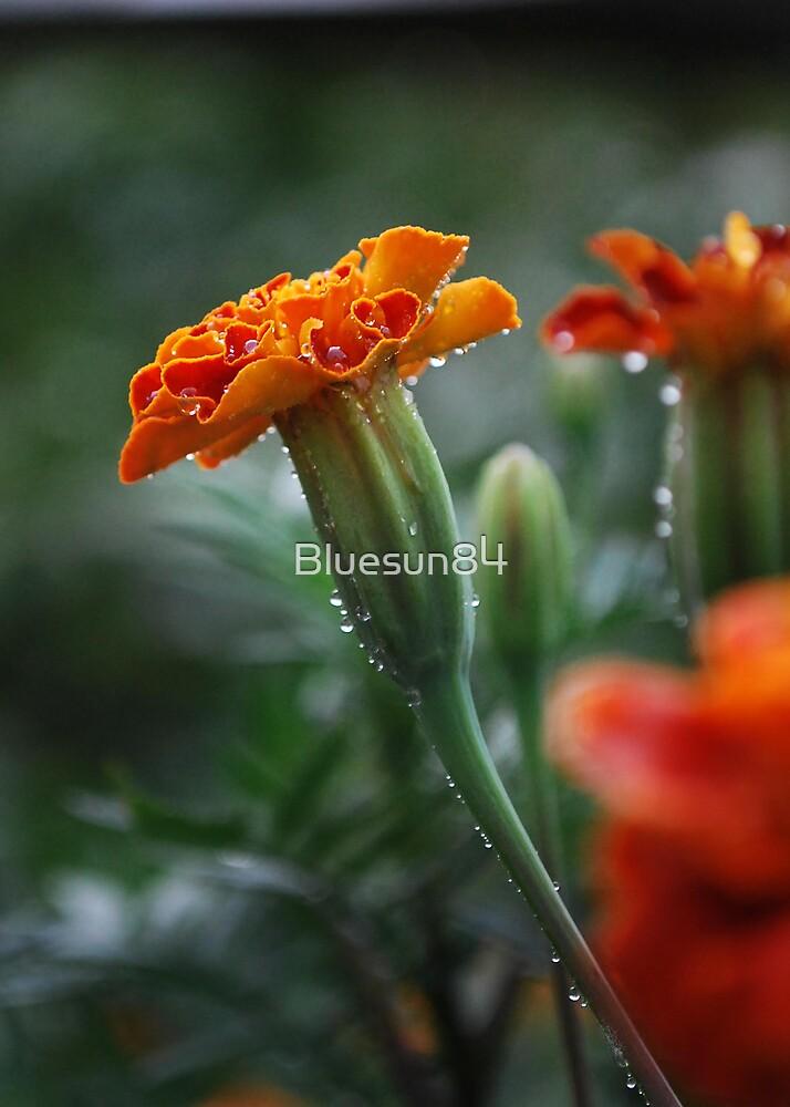 I Glow in my Glamour by Bluesun84