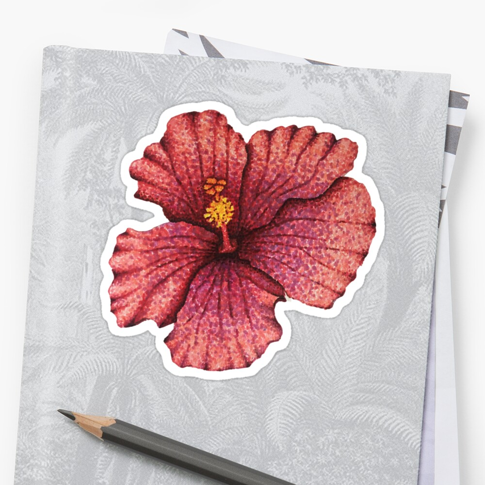 Hawaiian Hibiscus Flower Drawing Stickers By Nicole Owens Redbubble