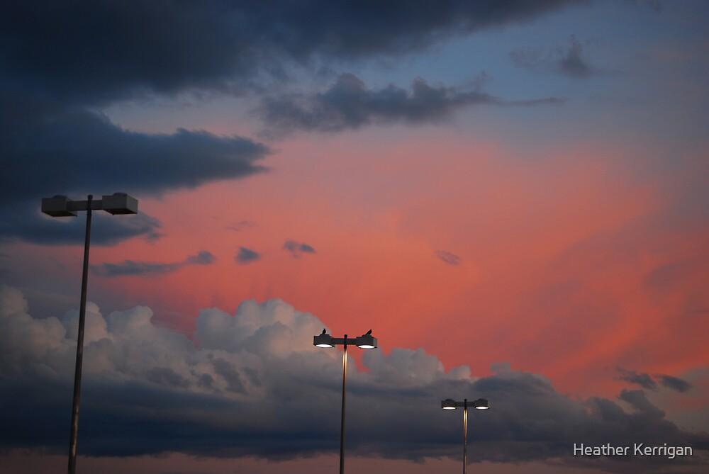 Parkinglot bliss by Heather Brink