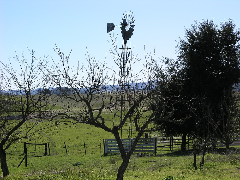 Windmill on the Ranch by Sandra Gray
