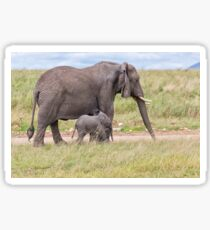 African Bush Elephant and her Baby Sticker