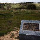 Billy Thorpe Memorial - Sunbury by Colin  Ewington
