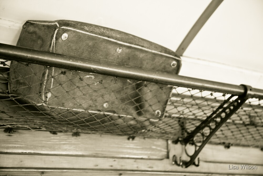 ...overhead luggage compartment... by Lisa Wilson