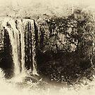 Trentham Falls - Victoria by Colin  Ewington