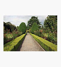 Altamont Gardens view 2 Photographic Print