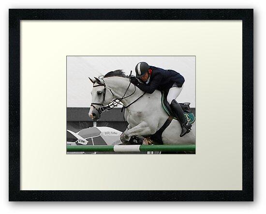 Equestrian Beauty by ©FoxfireGallery / FloorOne Photography