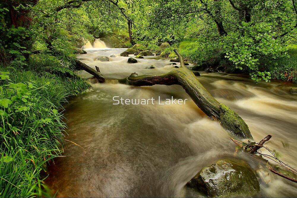 Aira Beck 1 by Stewart Laker