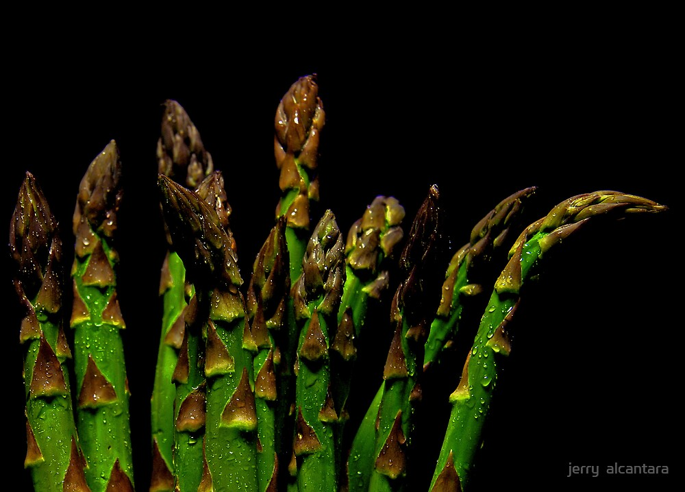 Asparagus by jerry  alcantara