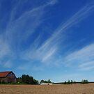 Skies of Blue by Rebelx