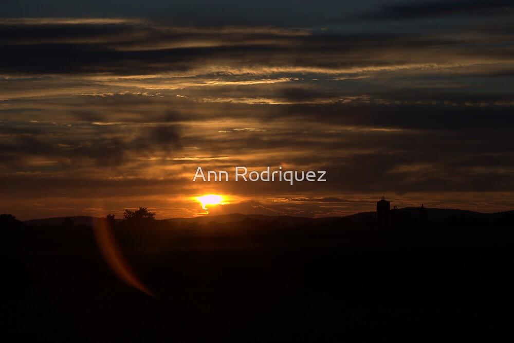 Farmland Sunset by Ann Rodriquez