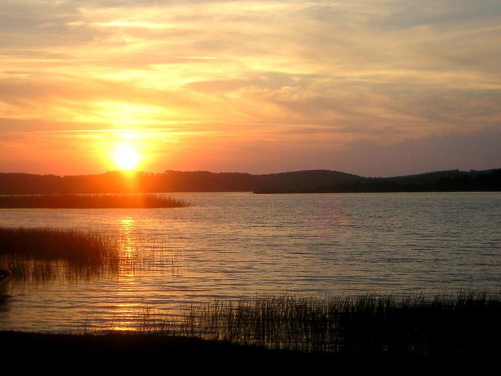 La Lac by rebagrace