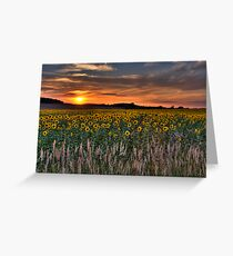 Last Light of the Day Greeting Card