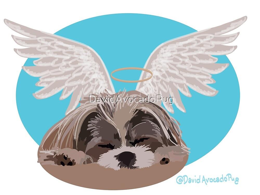 Some angels wear fur instead of wings @DavidAvocadoPug by DavidAvocadoPug