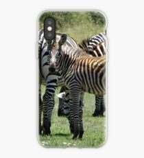 Junges Zebra iPhone-Hülle & Cover