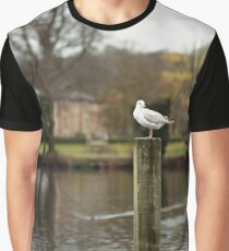 Henley Gull Graphic T-Shirt