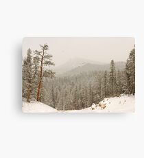 Mountain Pass Canvas Print