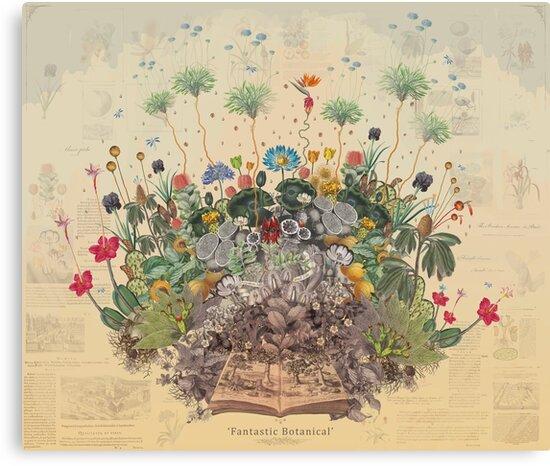FANTASTIC BOTANICAL by Paul Summerfield