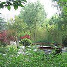 Asian Garden by Snowkitten