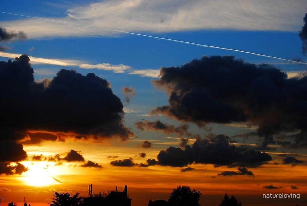 Sunset by natureloving