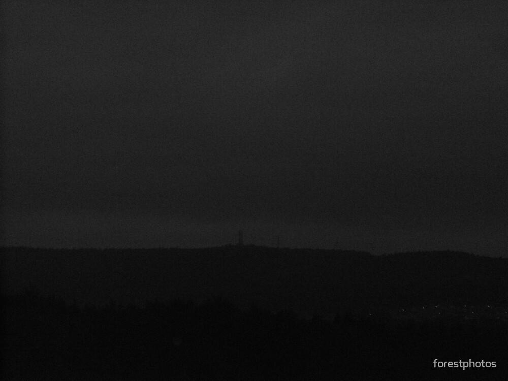 Grey Sky by forestphotos