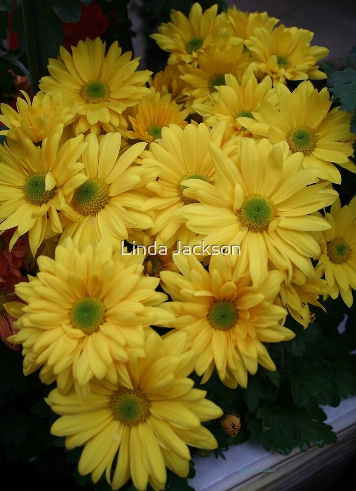 Flower Power Yellow! by Linda Jackson