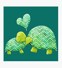 Sweet Turtle Hugs with Heart in Teal, Lime Green and Turquoise Photographic Print
