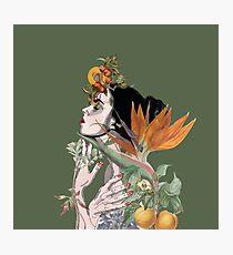 Botanical Beauty Photographic Print