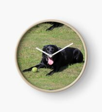 labrador retriever black laying with toy Clock