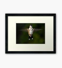 Junior Framed Print