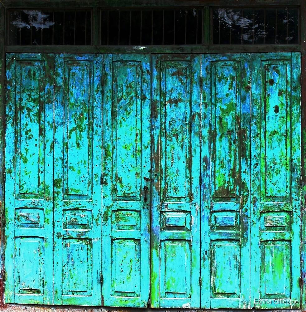 Turquoise Doors  by Ethna Gillespie