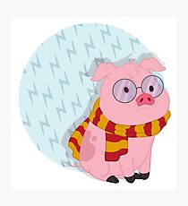You're a Wizard, Waddles  Photographic Print