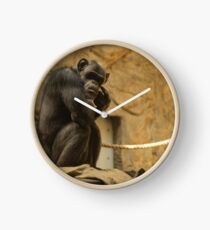 Chimp in Thought Clock
