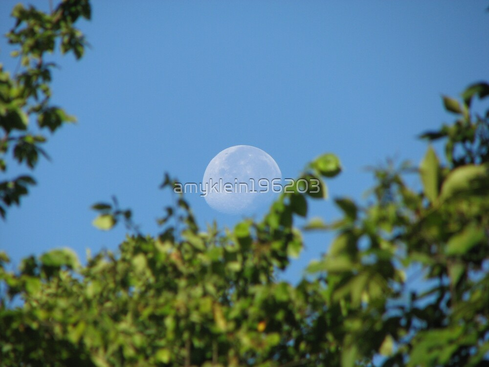 Anns' Wednesday  Moon by amyklein196203