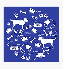 Cute vector illustration goods to care for dogs arranged in a circle.  Health care, vet, nutrition, exhibition. Photographic Print