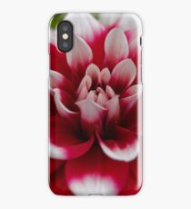 Macro photo of a red and white Dahlia iPhone Case/Skin