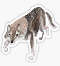 Totem Russian Wolf Pegatina