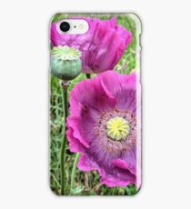 Purple poppies iPhone Case/Skin