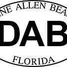 DUNE ALLEN BEACH FLORIDA EURO OVAL DAB by MyHandmadeSigns