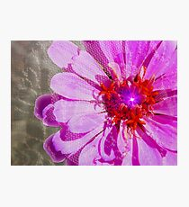Petals To The Metal Photographic Print