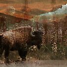 Bison Hill by Marty Samis