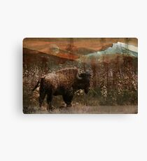 Bison Hill Canvas Print