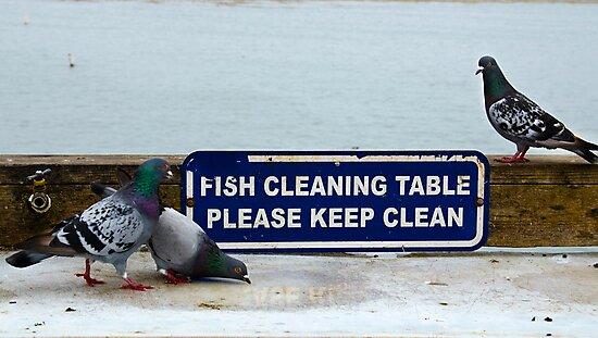 Keep Clean by Alison Cornford-Matheson