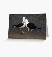 Pacific Gulls 1 Greeting Card