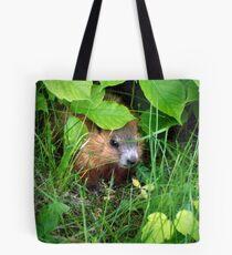 Cute Shy Peek a Boo Baby Groundhog  Tote Bag