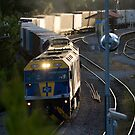 CFCL Aust as the sun goes down. by Michael Smith