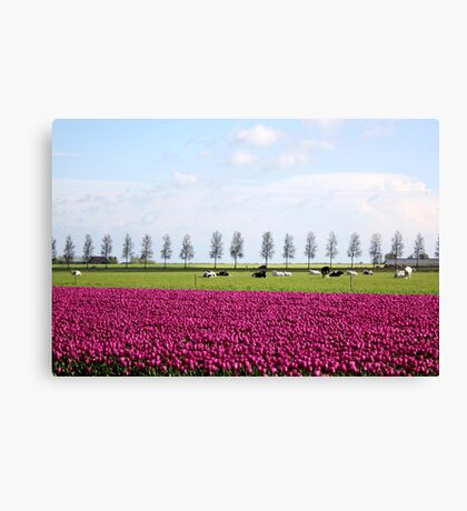Holland in Spring Canvas Print